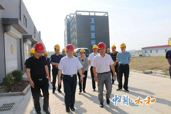 县委书记杨波到肖口绿色新能源产业园视察