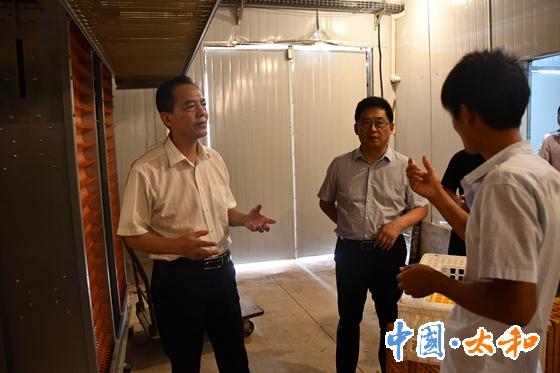 在高欣牧業養殖場,查看三期工程建設情況_副本_副本.jpg