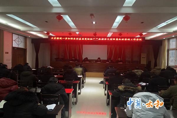 五星镇召开进一步加强农村基层党组织领导扶