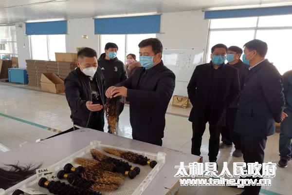 太和縣委書記楊波深入基層調研脫貧攻堅和企業復工復產工作