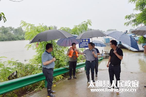 太和縣委書記楊波督導防汛工作