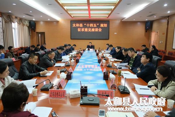 """太和县召开""""十四五""""规划征求意见座谈会"""