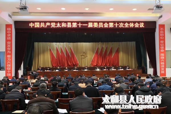 太和县委十一届十次全体会议召开