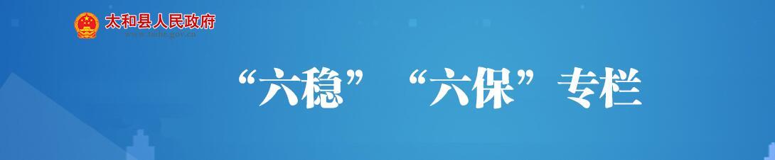 """""""六稳""""""""六保""""专栏"""