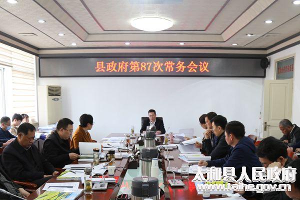 太和县召开县政府第87次常务会议