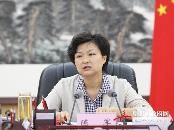 陈军出席全市投资项目调度会