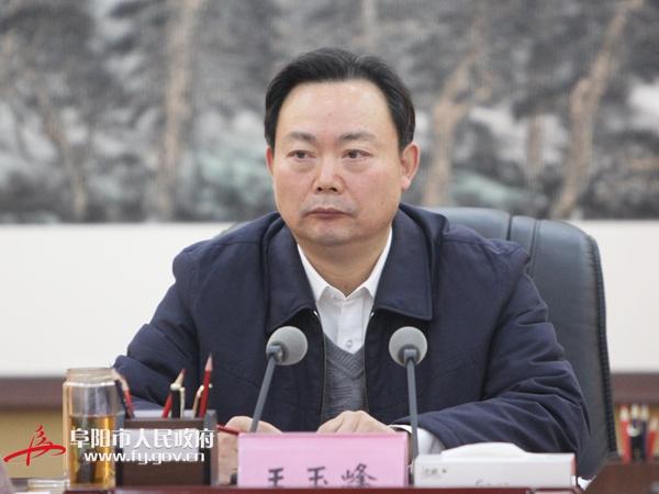 王玉峰出席全市城建工作座谈会