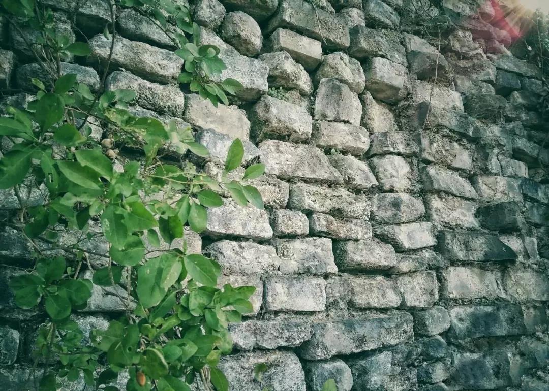 阜阳也有古城墙,鲜有人知道它的位置,亲见的更少
