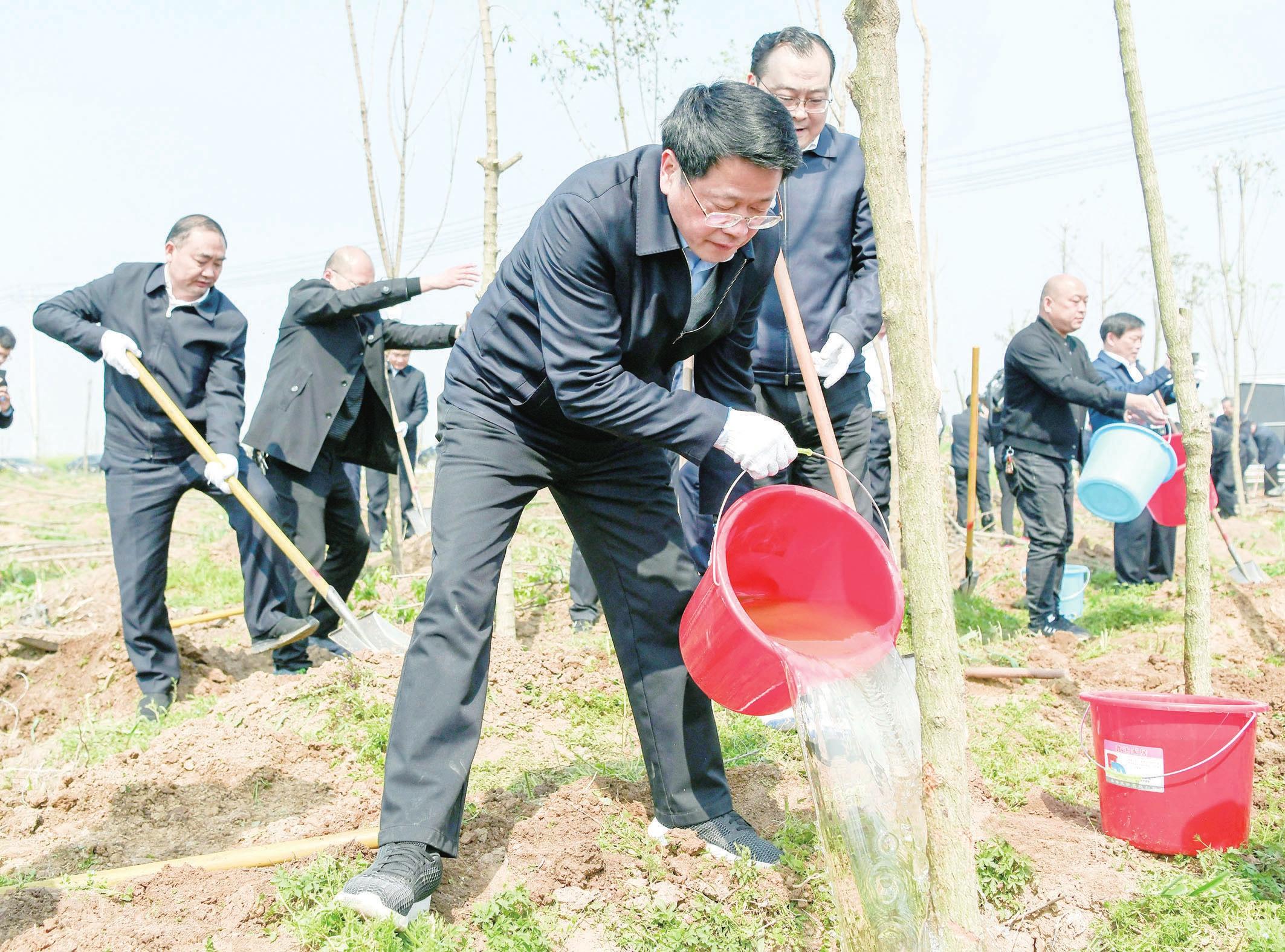 杨光荣孙正东等市几大班子领导参加义务植树活动