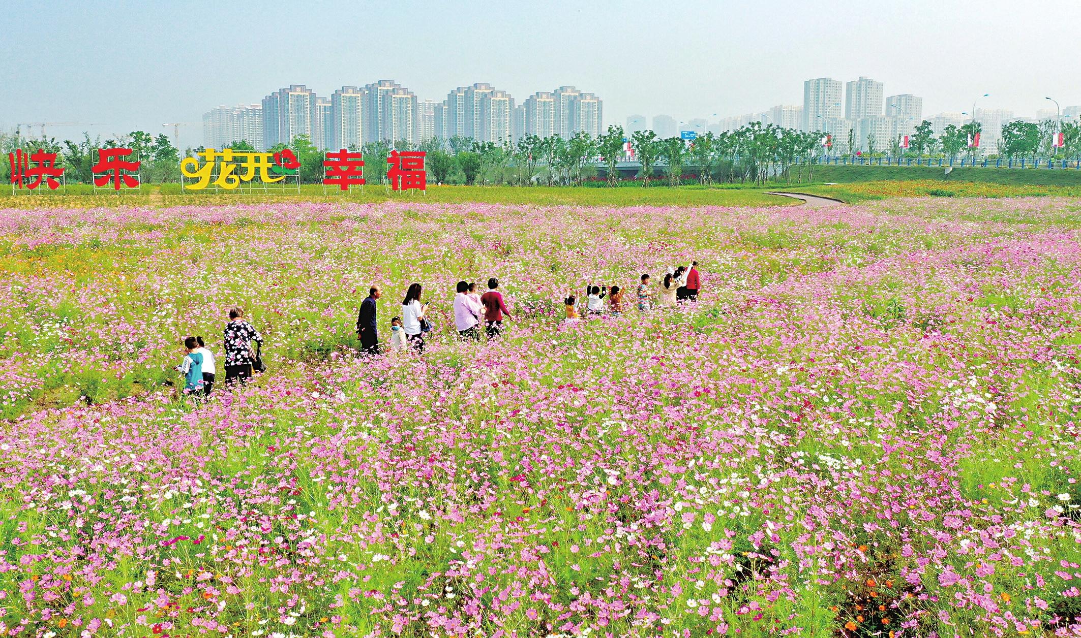第十届中国月季展览会在阜举行