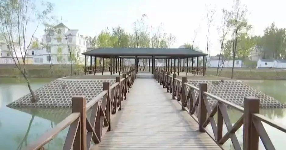 《?#36153;?#26032;闻联播》聚焦颍泉:乡村生态好环境 宜居宜业新家园