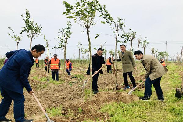 颍泉区审计局党员活动日:开展春季 义务植树