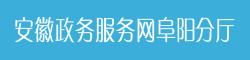 安徽政务服务网阜阳分厅