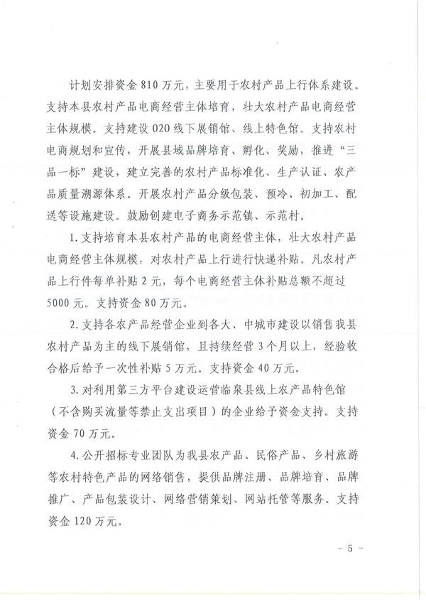 临政办〔2018〕29号示范县资金使用方案_5.jpg