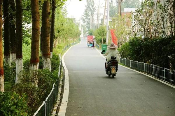 長官王營村村道