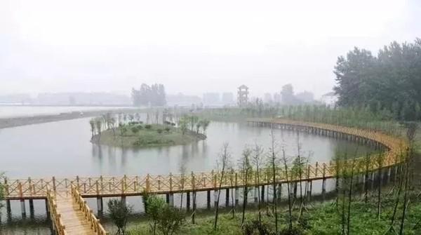高塘镇鹭鸟湿地公园