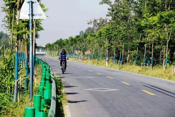 韦寨涎河畔的乡镇公路