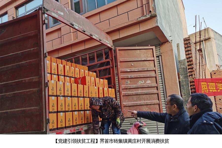 8.界首市砖集镇黄庄村开展消费扶贫.jpg