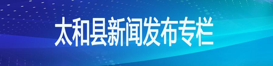 太和县新闻发布会专题