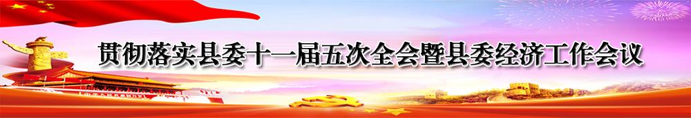 贯彻落实县委十一届五次全会暨县委经济工作会议专题