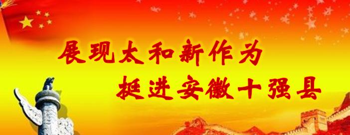 展现太和新作为 挺进安徽十强县