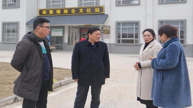 市文广新体局对阜南县文化设施建设进行督查指导